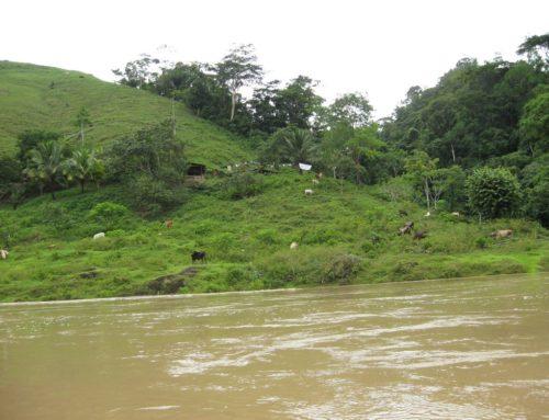 Die Reise in den Regenwald – ein Bericht